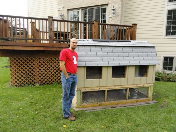 Suburban Backyard Chickens : Backyard Chickens Coming Soon to a Suburb Near You?  Algonquin, IL