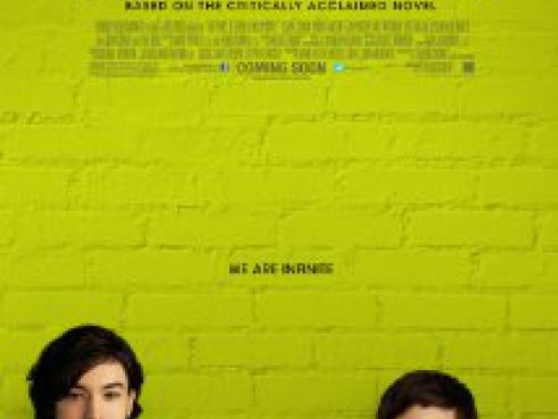 The perks of being a wallflower critical essay