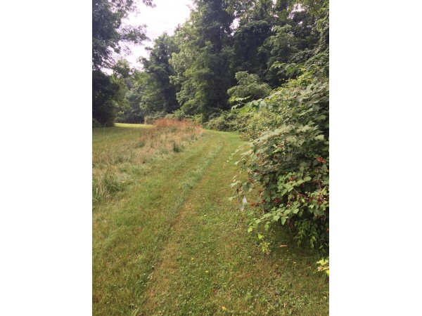 Trail S Blazers Set To Open New Hiking Path In Stony Brook