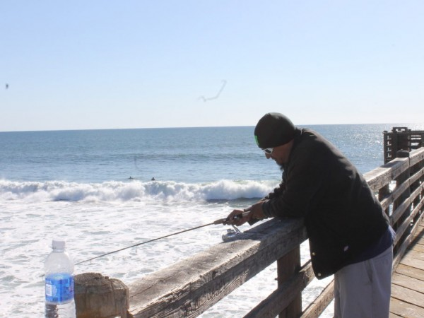 Little known facts about fishing off the oceanside pier for Facts about fishing
