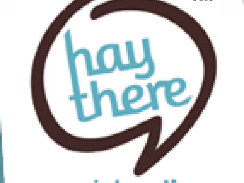 Hay There Social Media Specializes in Simplifying Marketing for Businesses