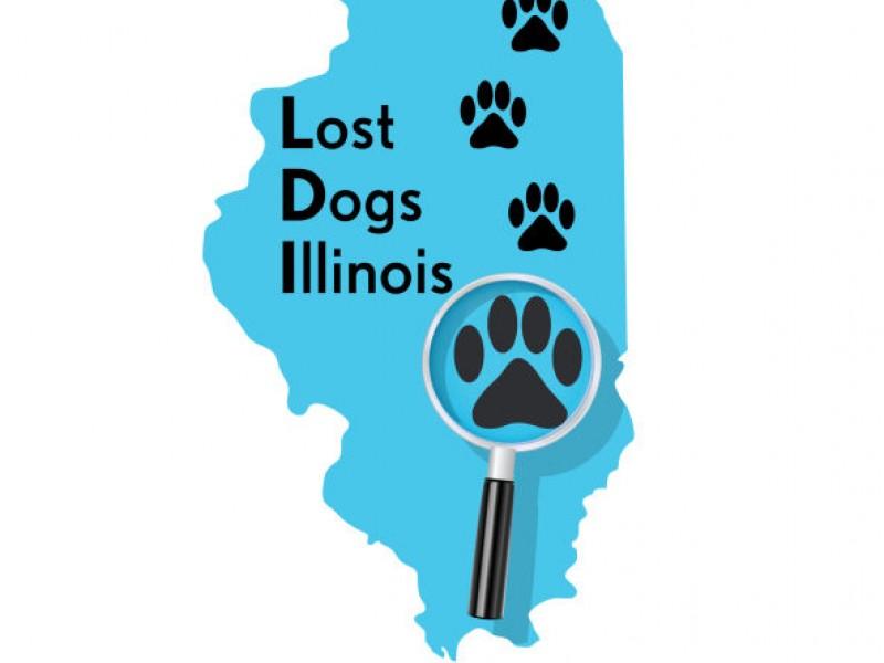 lost dogs illinois receives aspca grant