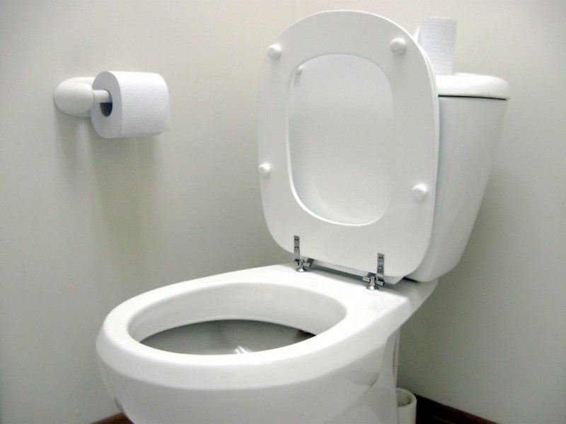 shoplifter hides evidence in winder store s toilet tank barrow ga