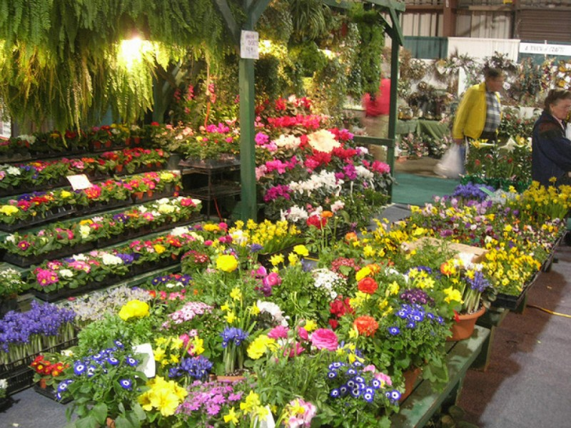 ... Maryland Home U0026 Garden Show  ...