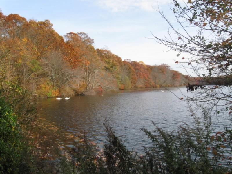 Greenbelt Trail Long Island Ny