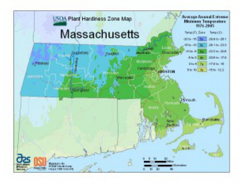About Those New USDA Hardiness Zone Maps