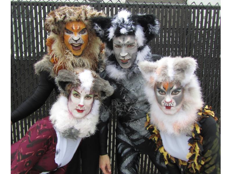 highland park actors star in  u0026 39 cats u0026 39