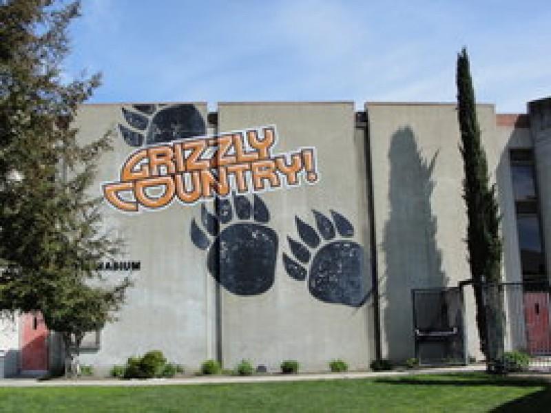 Mercedes Of Walnut Creek >> Congratulations California High School Class of 2012 ...