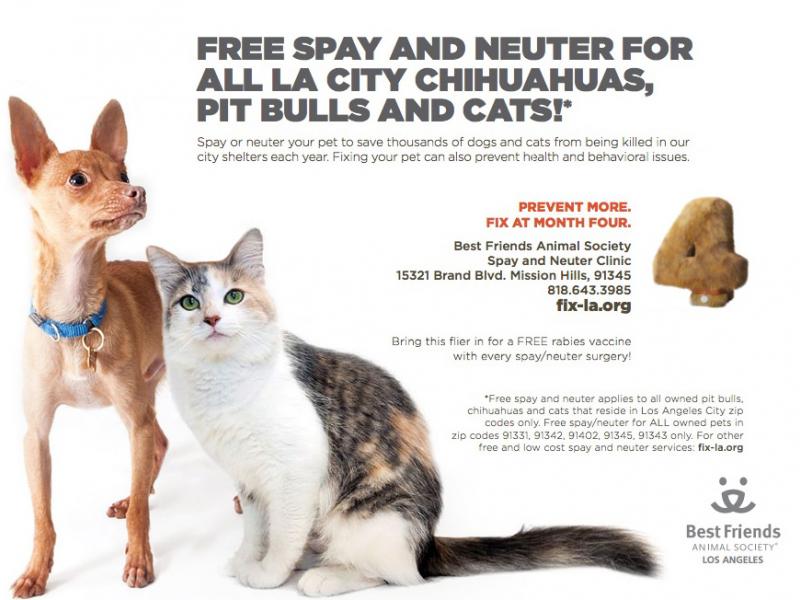 Free Dog Cat Spay