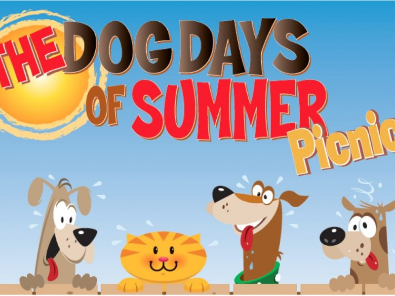 Dog Days Of Summer Picnic A Saturday Date For You And