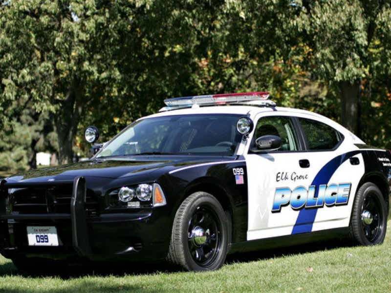 teen officers police grove attacks elk
