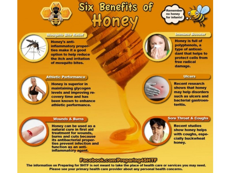 Health Benefits of Local Raw Honey - Carrollwood, FL Patch