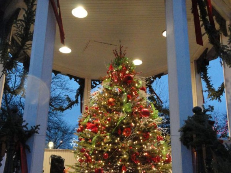 Where To Find A Christmas Tree Near Cleveland Heights