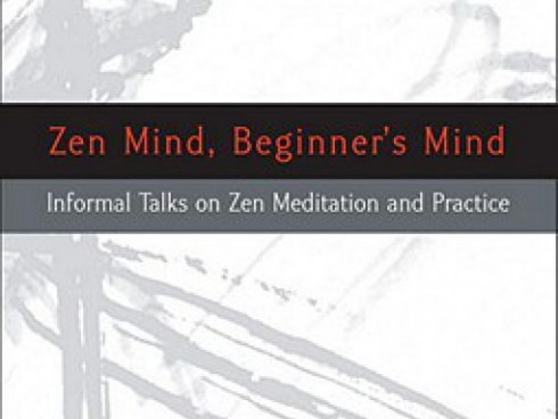 a critical book review on zen mind beginners mind by shunryu suzuki 16092014  the beginner's mind: how naiveté can become a critical  opinions expressed by forbes  is a zen principle, popularized by shunryu suzuki.