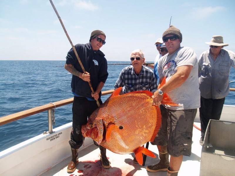 Huntington Beach Pier Fishing Report | Travel Guide