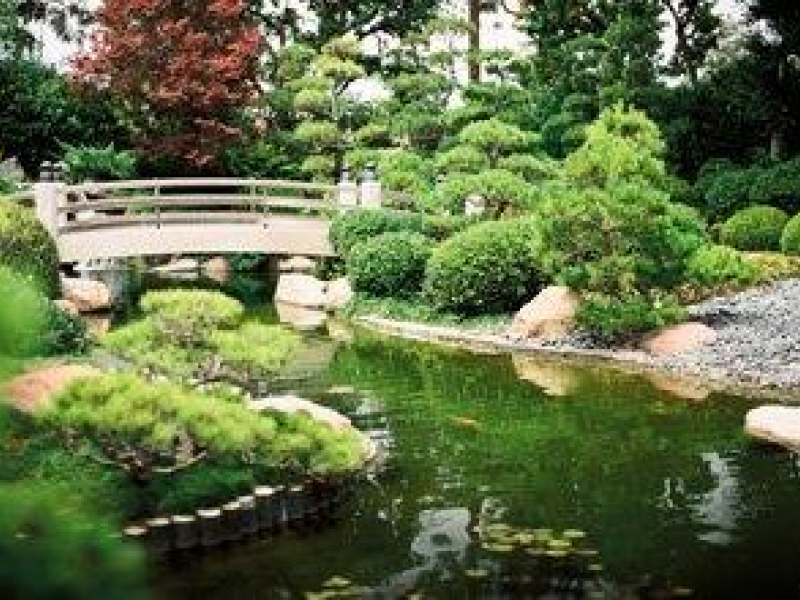 CSULB Japanese Garden, Friends of Long Beach Public Library to ...