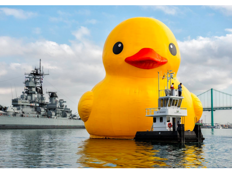World\'s Biggest Rubber Duck to Float Down Delaware River | Newtown ...