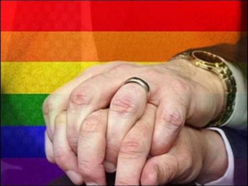 parasite gay mens lycra