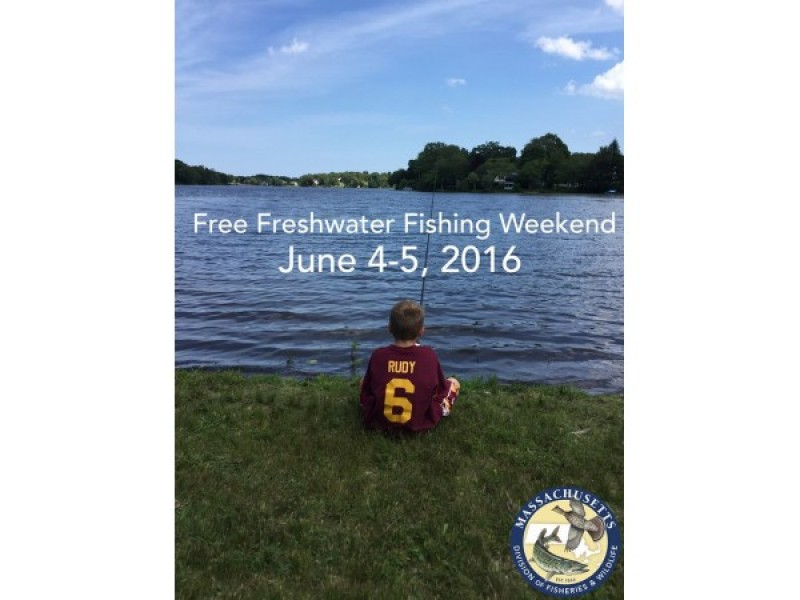 It 39 s free freshwater fishing this weekend in massachusetts for Massachusetts freshwater fishing license