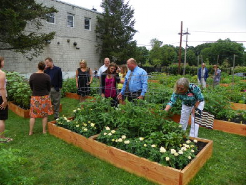 New Community Gardens Planned for Flanders Area