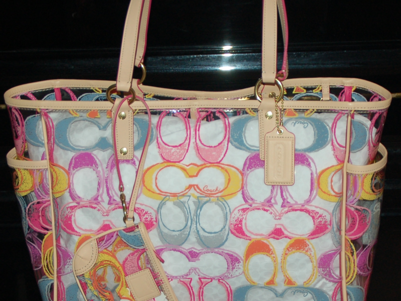 Coach Scribble Clear Large Beach Bag Tote W Matching Wristlet F22513 Nwt