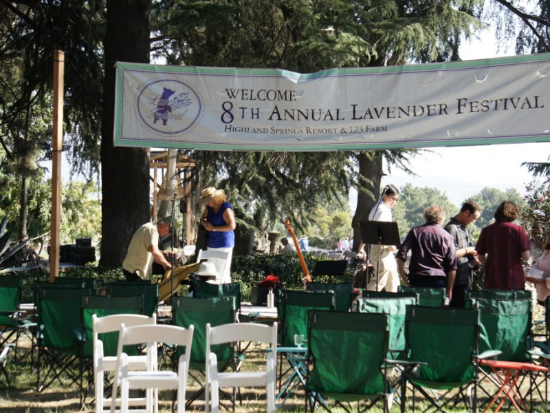 8th Annual Lavender Festival Continues This Weekend