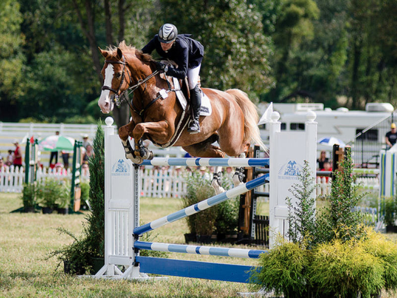 Watch Horses Leap at the HCC Grand Prix