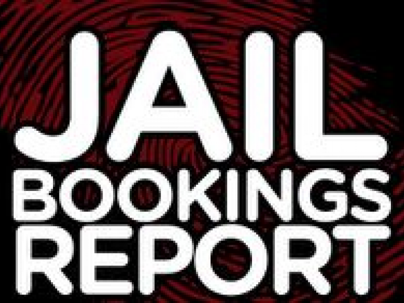 Palm Harbor Jail Bookings Aug 31 To Sept 6 Palm Harbor Fl Patch