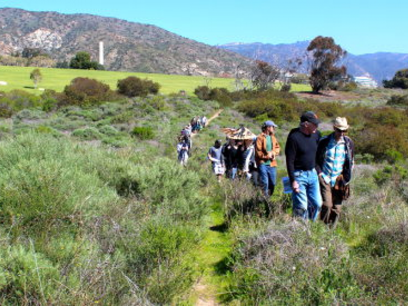 Report: City of Malibu\'s Cost to Manage Bluffs Park Over Charmlee ...