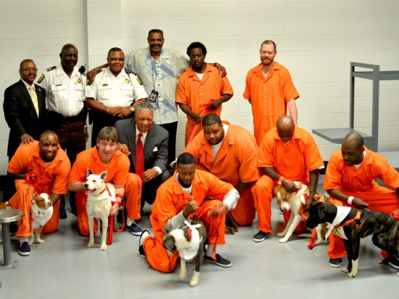 100+ Atlanta Detention Center Inmates – yasminroohi