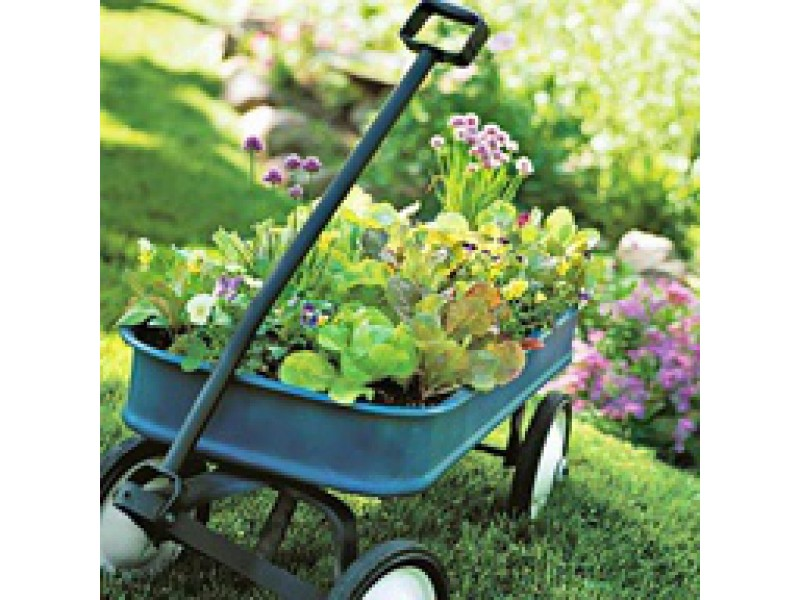 ... The Top 10 Must Have Garden Tools 0 ...