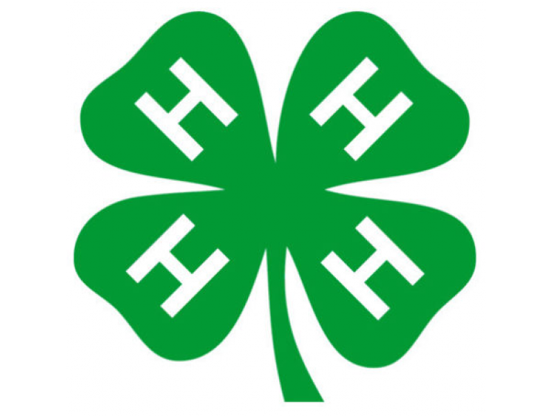 Pickens County 4 H Adds Classes Clubs Easley Sc Patch