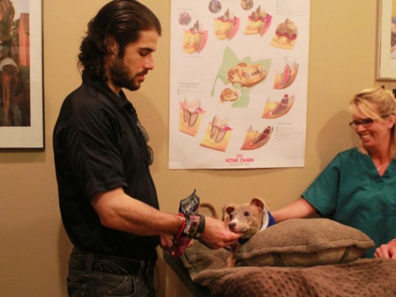 Islanders 39 Rick Dipietro Visits Joey At Animal Hospital West Islip Ny Patch