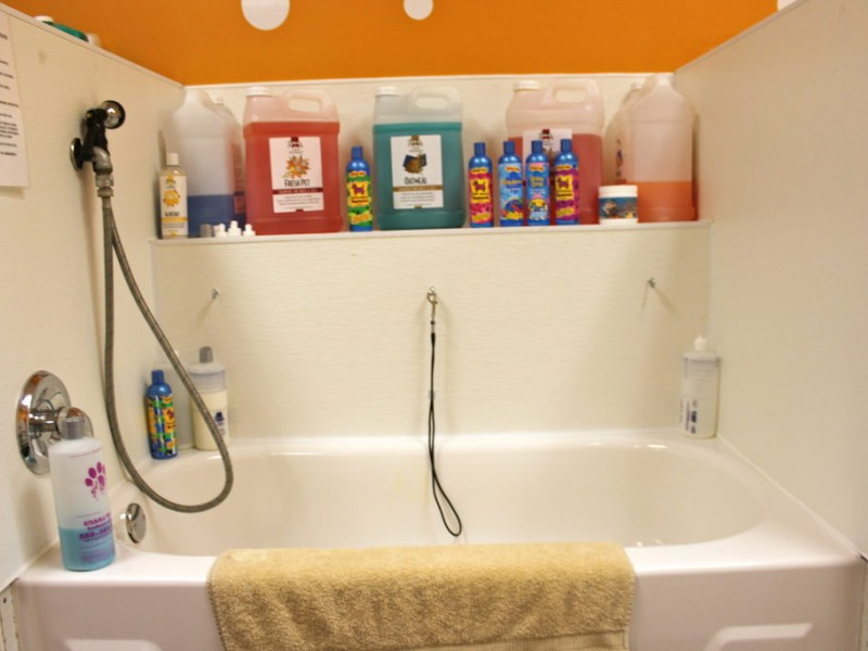 Bathing a pet has become easier channahon il patch solutioingenieria Choice Image