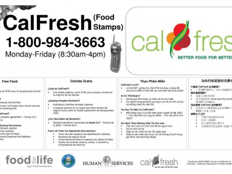 Calfresh Sf Food Bank