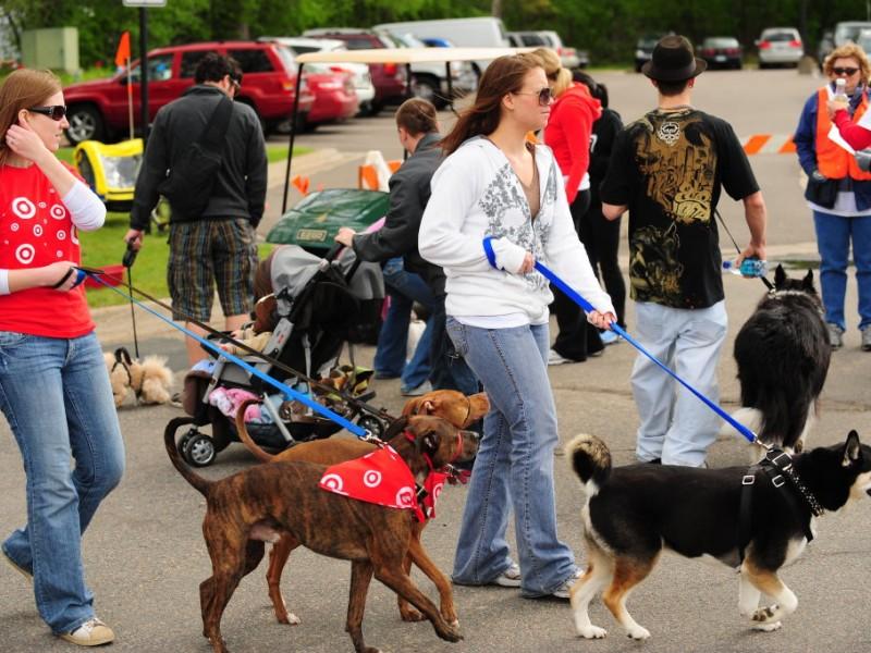 Walk for animals at animal humane society golden valley Golden state humane society garden grove ca
