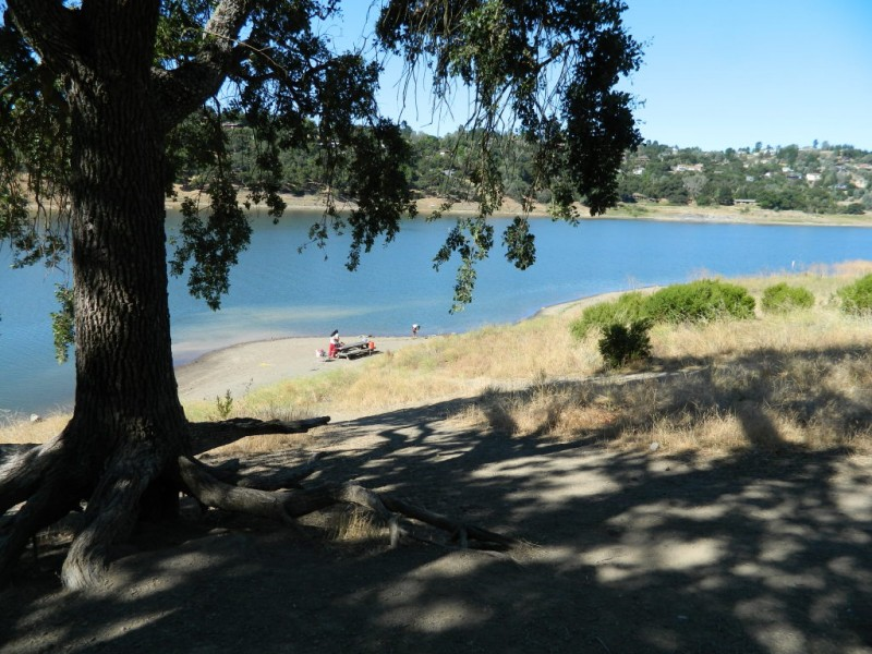 Great Escape Cool Off At Anderson Lake Gilroy Ca Patch
