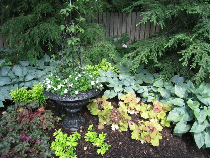 My Quot Top 10 Quot Perennials For The Shade Garden Town And