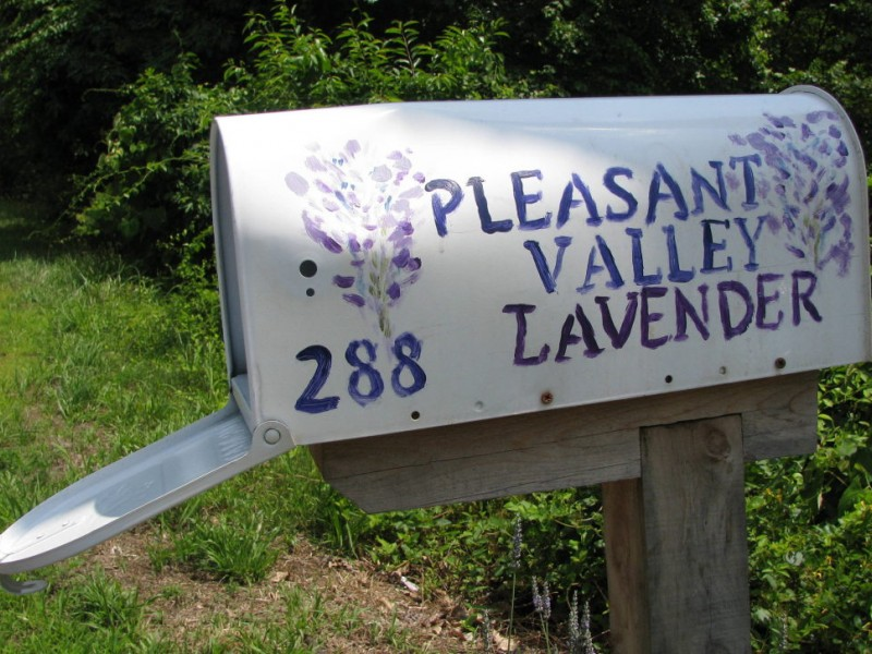 Image result for pleasant valley lavender farm