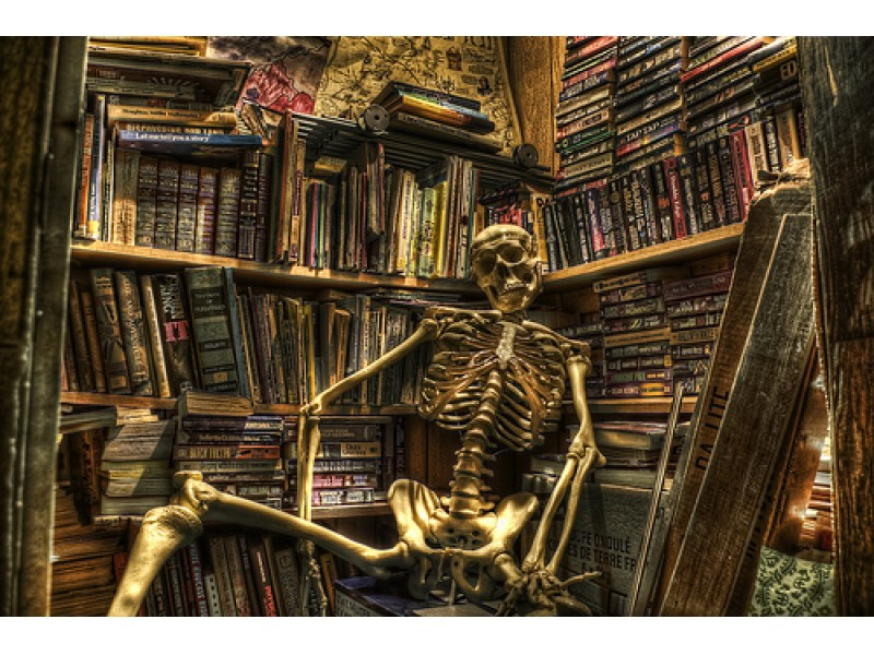 Image result for haunted library