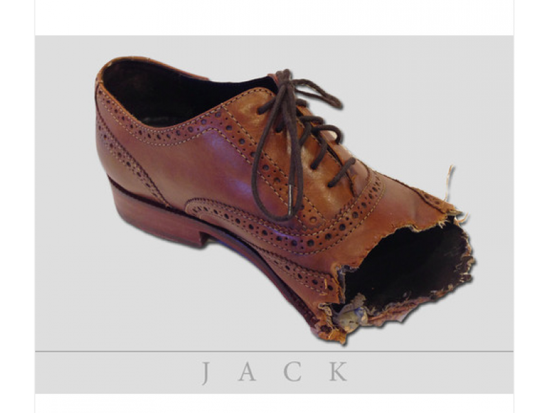 ... Jack the Canine Artist: Dog Chews Designer Shoes, Owner Posts to eBay-0  ...