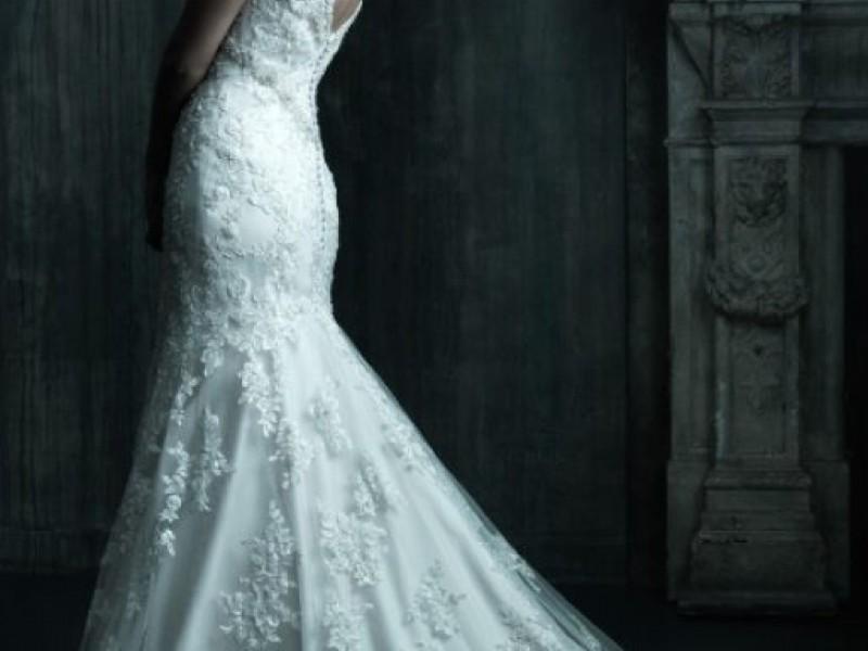Allure bridals trunk show at bella sera bridal danvers ma patch allure bridals trunk show at bella sera bridal junglespirit Gallery