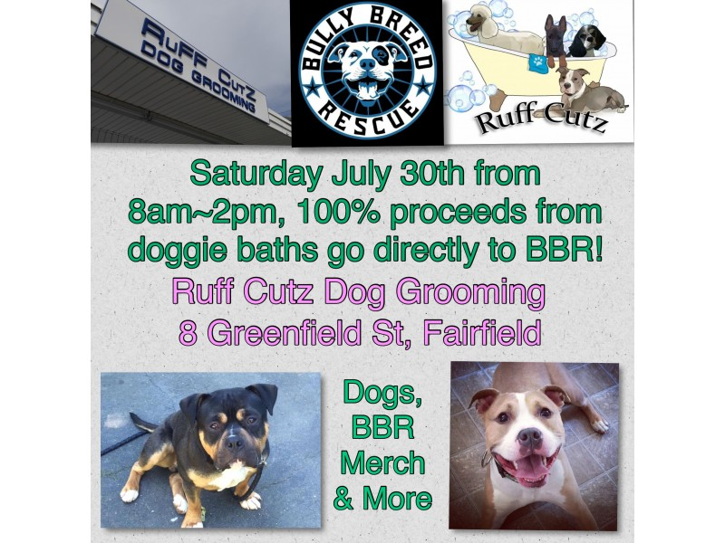 Dog wash at ruff cutz fairfield ct patch dog wash at ruff cutz solutioingenieria Images