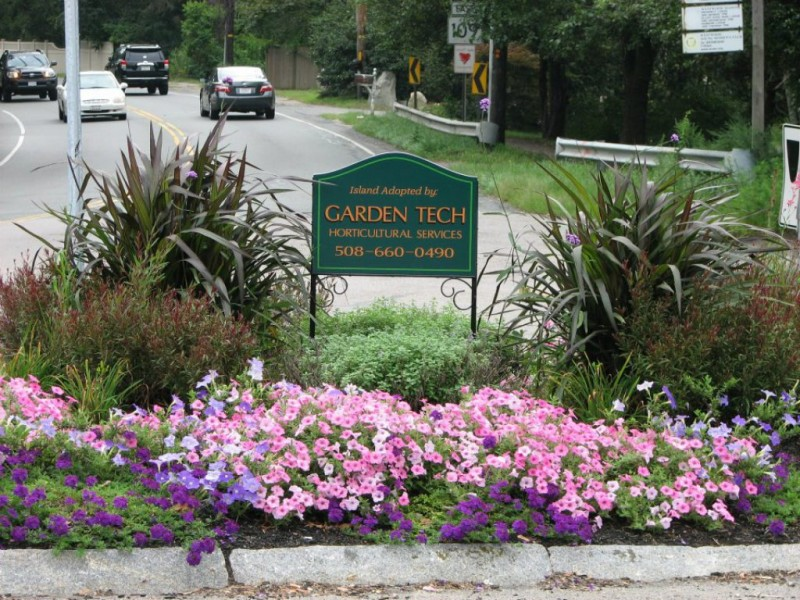 Walpoleu0027s Garden Tech Horticultural Services Provides Remedy For Damaged  Plantings | Walpole, MA Patch