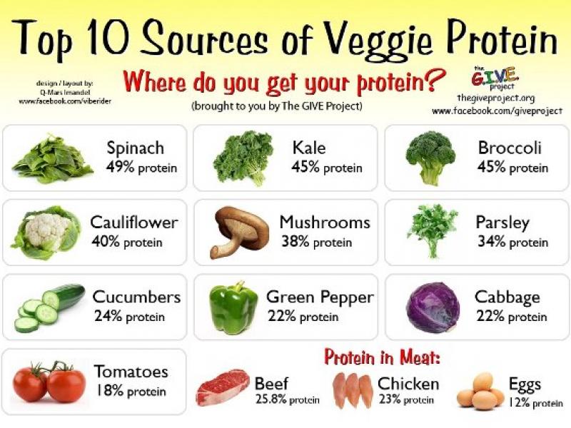 how much protein vegan bodybuilding