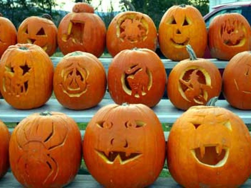 Pumpkin patch lawrenceville nj library