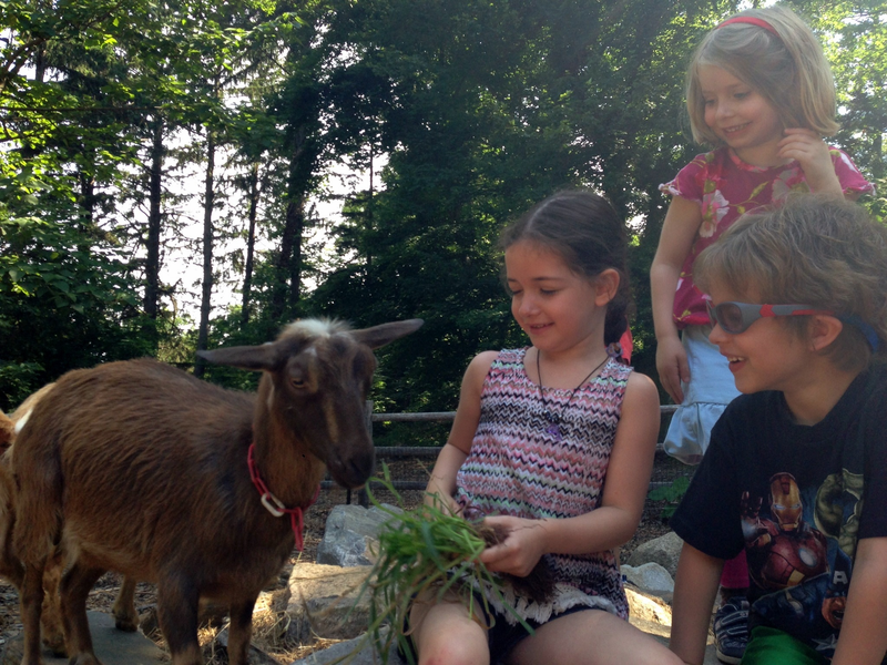 Meet the Animals at Greenburgh Nature Center
