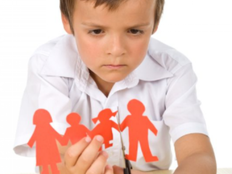 Completing Georgias Child Support Worksheet Tips Resources