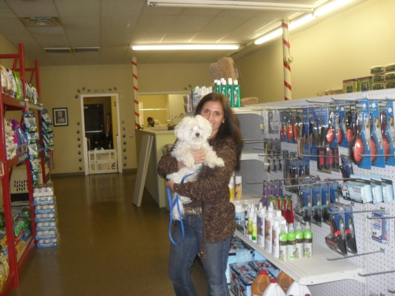 88 - Wash Your Dog At Lindsey\'s Groom Room | Kings Park, NY Patch