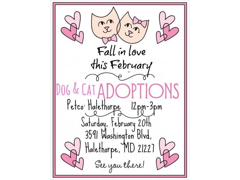 Barcs Dog And Cat Adoption Event